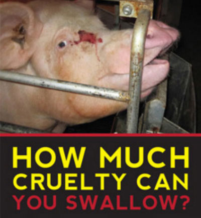 How much cruelty can you swallow?